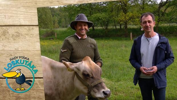 Tomáš Krejčíř nás provedl po své farmě. Venkovský způsob života mu učaroval!