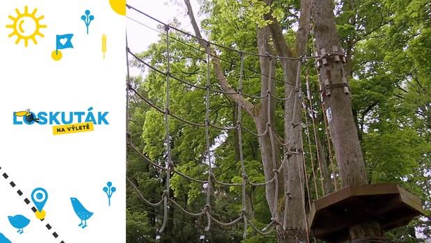 Adrenalinový zážitek pro celou rodinu! Zdoláte všechny překážky v lanovém parku?